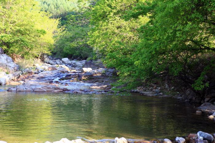 계곡 물놀이와 캠핑 삼매경, 신대계곡 3
