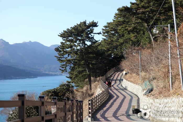 바람의 언덕 사진10