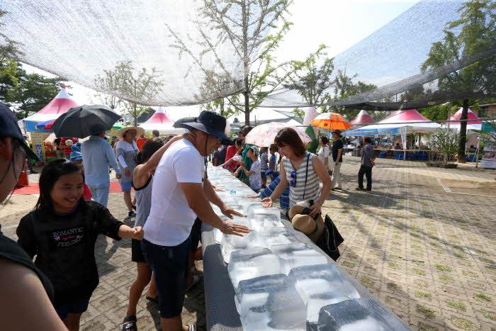 홍천 찰옥수수축제 2019