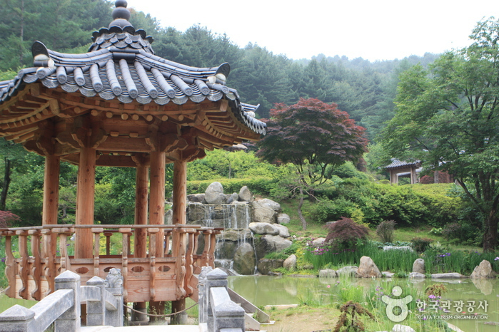 The Garden of Morning Calm (아침고요수목원)