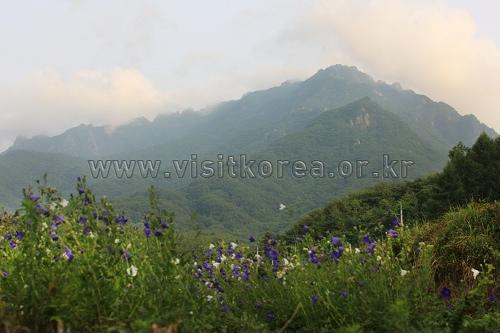 伽倻山国立公園(白雲洞地区)(가야산국립공원(백운동 지구))
