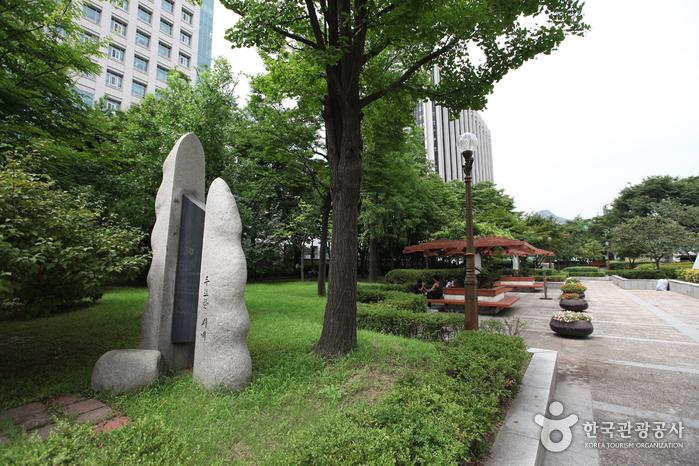 Парк Сечжонно (세종로공원)3