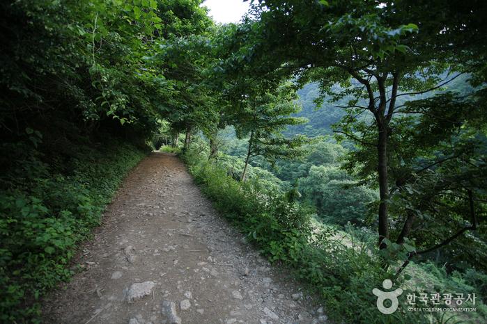 智異山国立公園(咸陽)(지리산국립공원(함양))