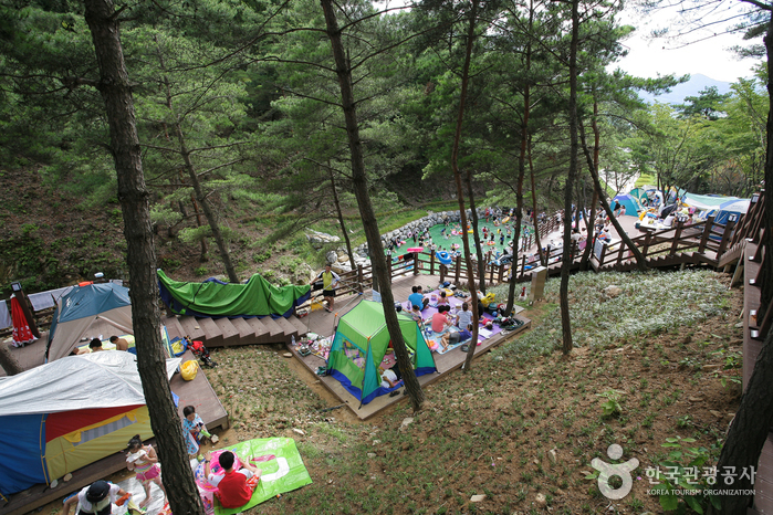 Songjeong Natural Recreation Forest ()