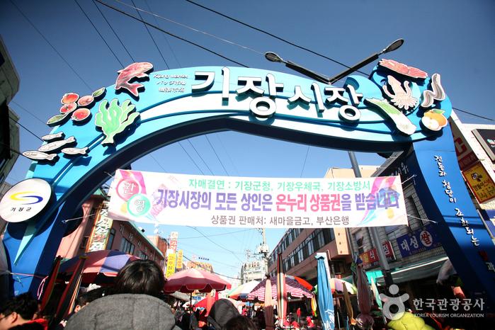 Gijang Market (부산 기장...
