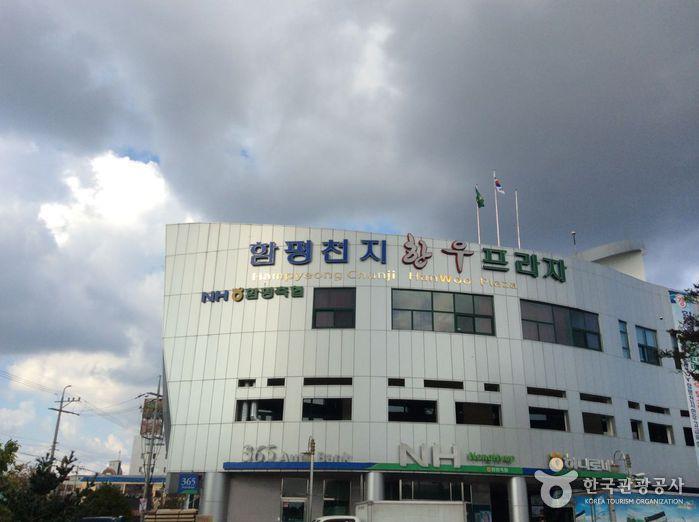 Hampyeong Cheonji Hanu Plaza (함평천지한우프라자)
