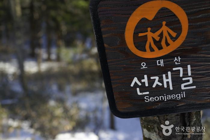 선재길 표지판