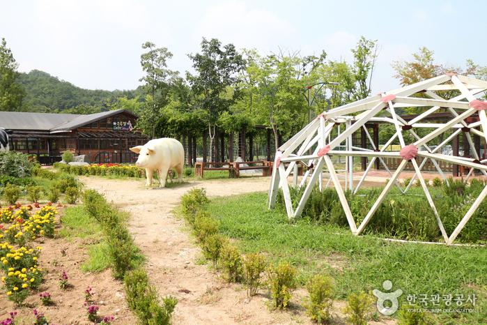 Тематический парк Ontrepieum в Андоне (안동 온뜨레피움)7