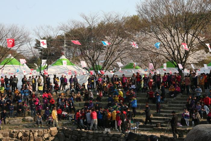 팔공산 벚꽃축제 2018  사진5