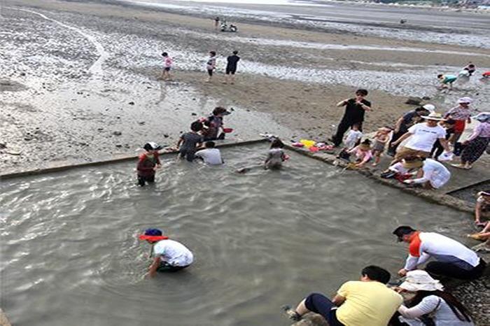 여수 여자만 갯벌노을축제 2018