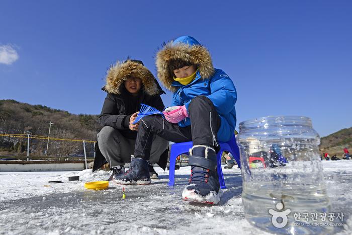 은빛 고운 호수의 요정을 만나다, 안성빙어축제 사진