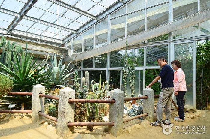 열대식물원