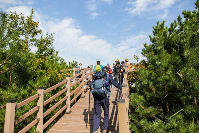 Festival des sentiers de randonnée Olle à Jéju (제주올레걷기축제)