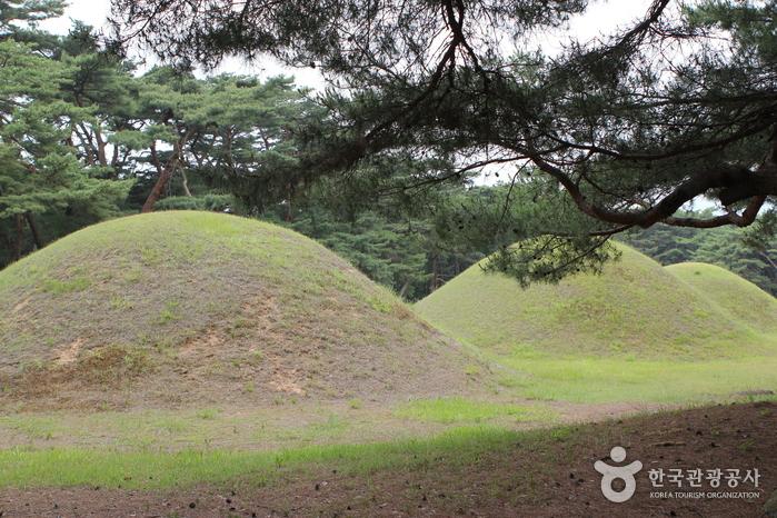 Gyeongju-si Special Tourist Zone (경주시 관광특구)