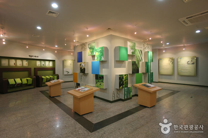 Корейский музей бамбука (한국대나무박물관)17