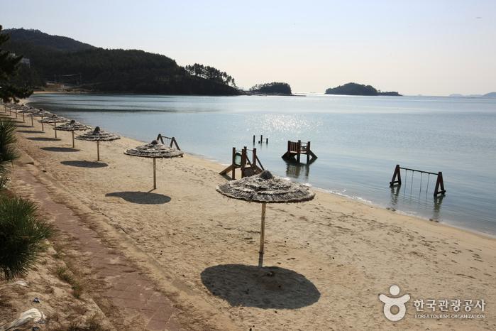 Пляж Сонхо (송호해수욕장)22