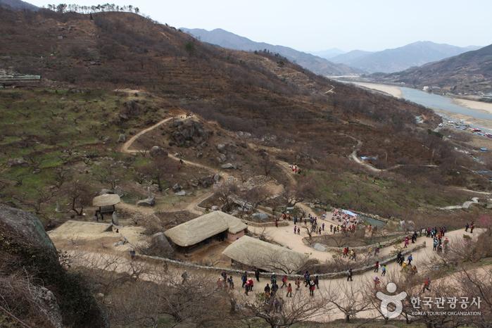 2012년 3월20일 매화마을 풍경