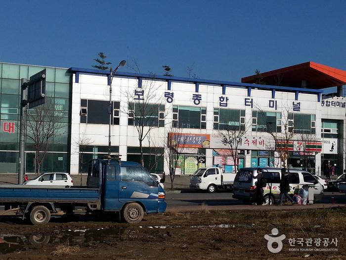 保寧総合ターミナル(보령종합터미널)