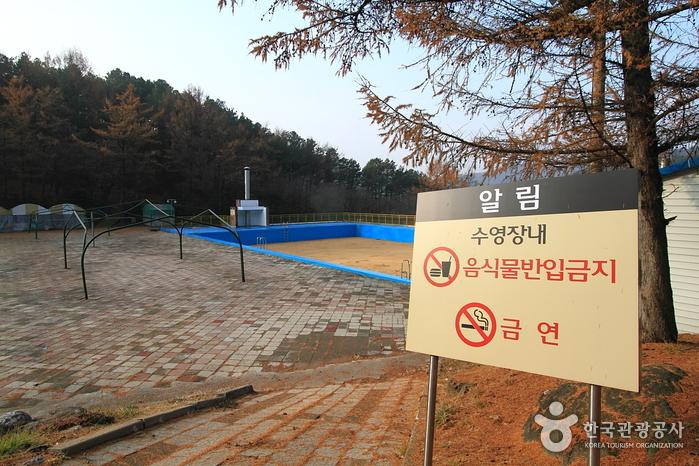 베어스타운리조트 수영장