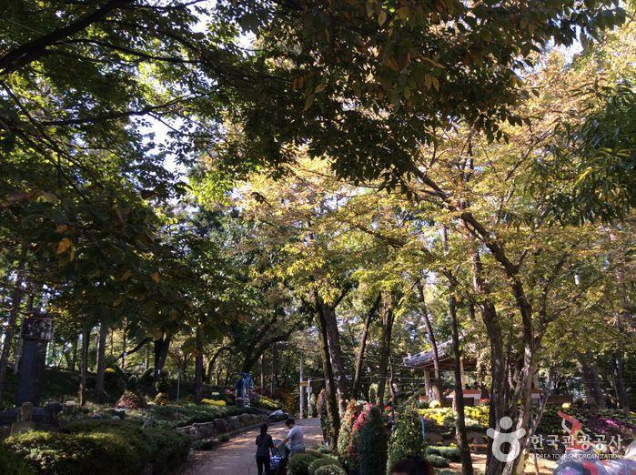 남산공원(화순)