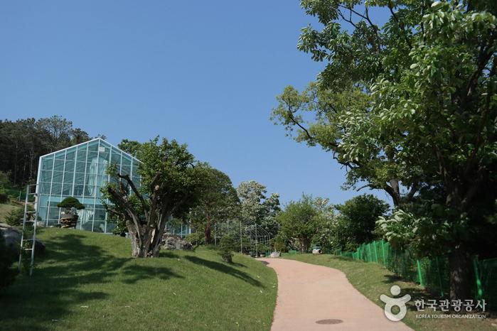 Botanischer Garten Soulone (소울원)