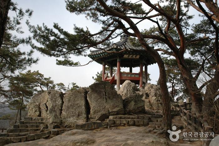 落花岩(낙화암)
