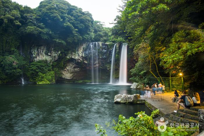 Cheonjiyeonpokpo Falls [UNESCO Global Geopark] (천지연폭포 (제주도 국가지질공원))
