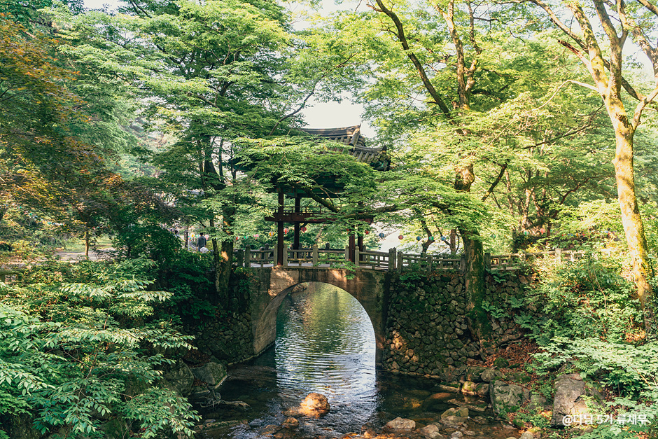 Gurye Cheoneunsa Temple (천은사(구례))