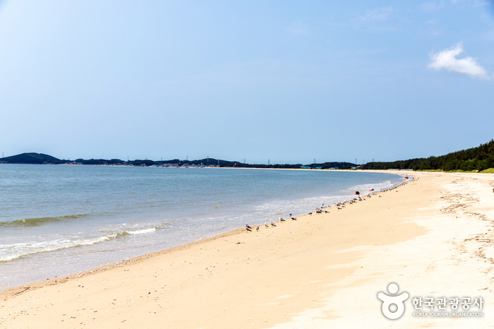 띠섬목해변