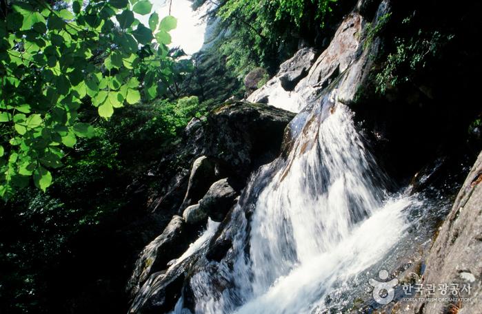 Tal Chiryeon (칠연계곡)