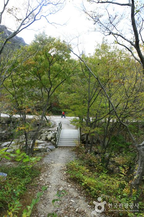 Seonunsan Provincial Park (선운산도립공원)