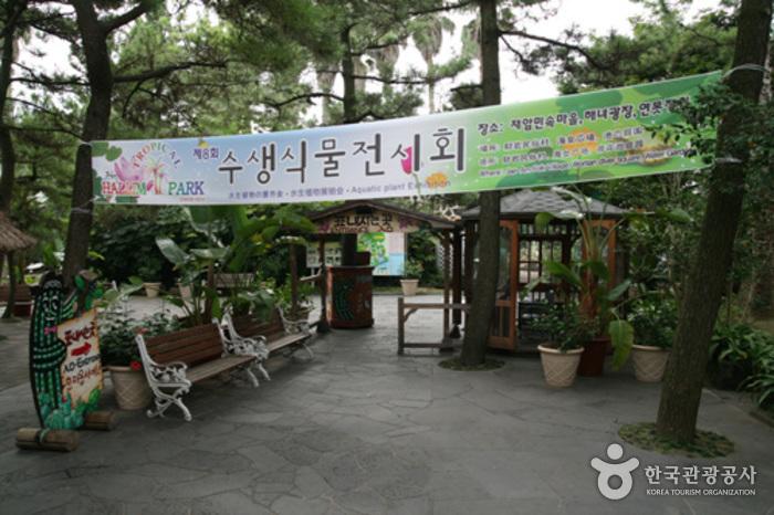 한림공원 다화원휴게소 (제주)