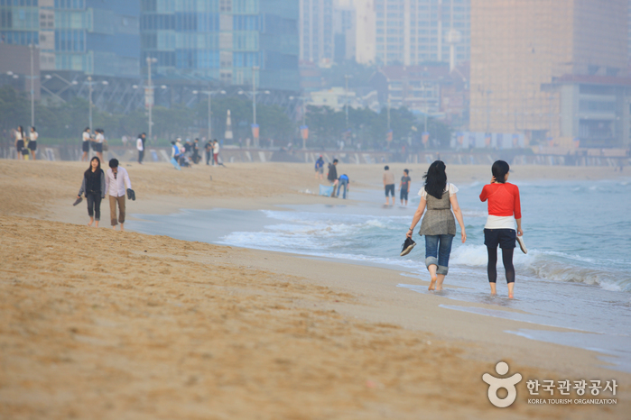 Haeundae Beach (...
