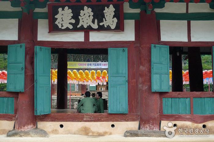 禅雲寺テンプルステイ(선운사 산사체험)