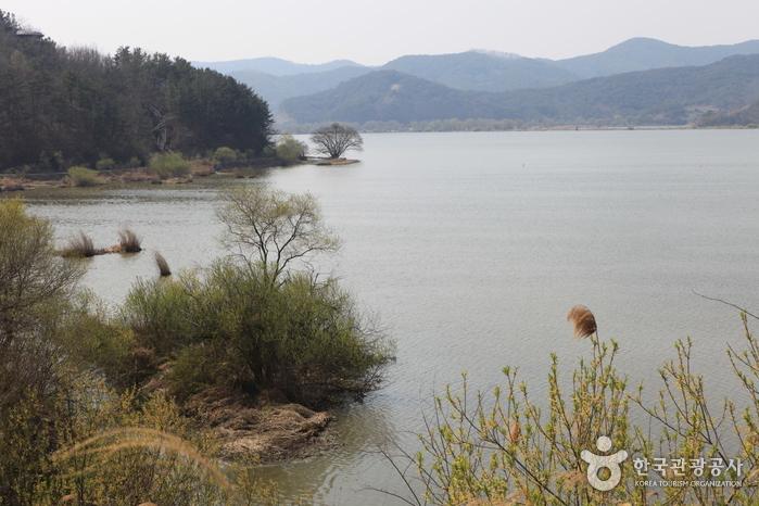 Changnyeong Upo Wetl...