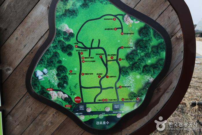 Camino Gangneung Bau-gil (Sendero 5) ([강릉 바우길 5구간] 바다 호숫길)