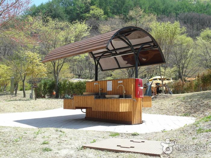금대 에코힐링 캠핑장