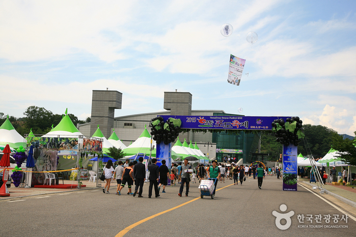 Yeongdong Grape Festival (영동 포도축제)