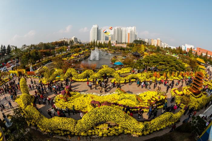 Iksan Ten Million Chrysanthemum Festival (익산천만송이국화축제)