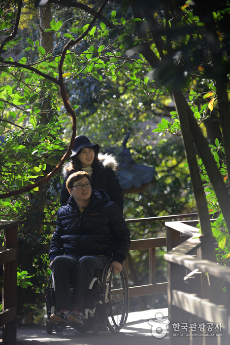 천리포수목원 내 층계 없는 길