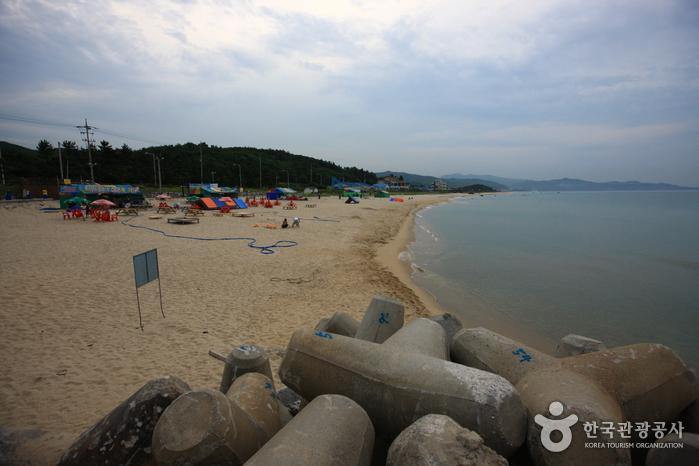 Daejin Beach (대진해수욕장)