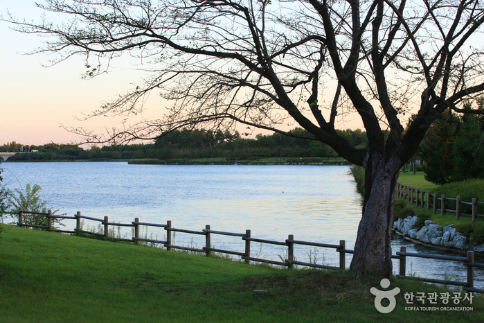 一山湖水公園(일산호수공원)