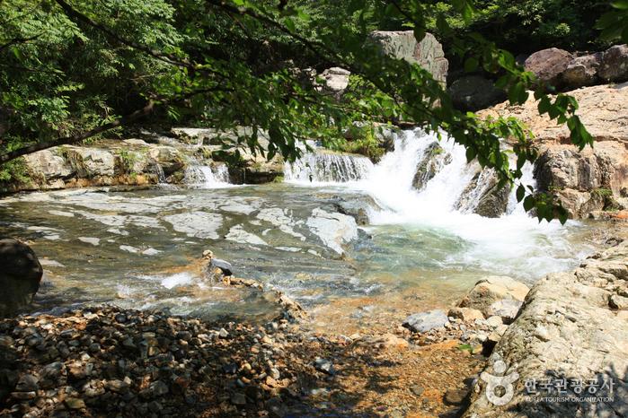 더운 여름, 김해의 계곡에서 놀아보자