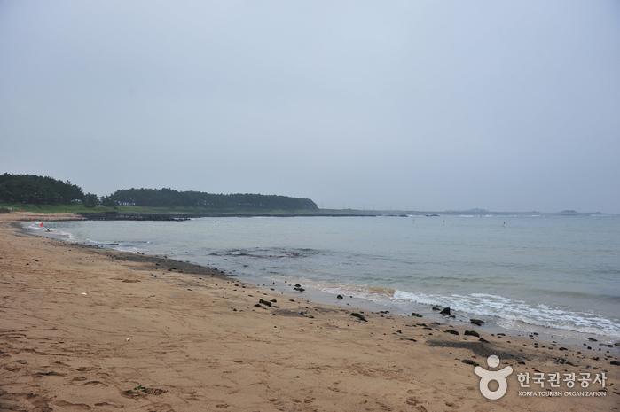 下摹里海岸(하모리해변)