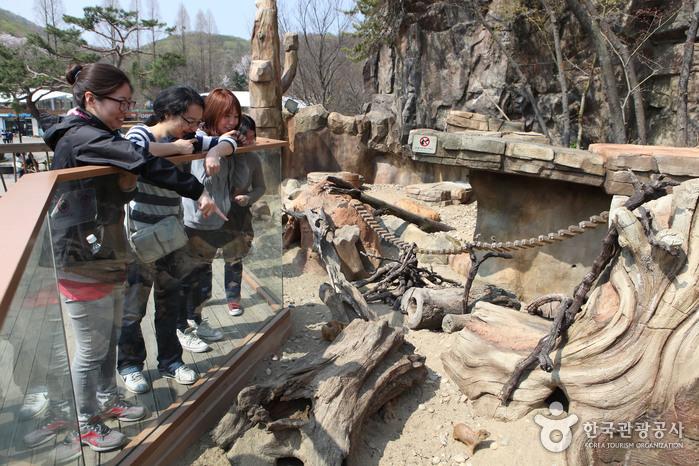 서울대공원 동물원2