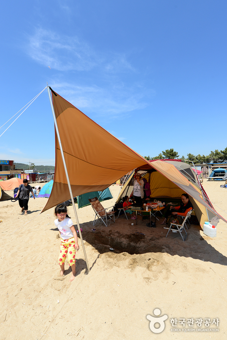 Wangsan Beach (왕산해수욕장)