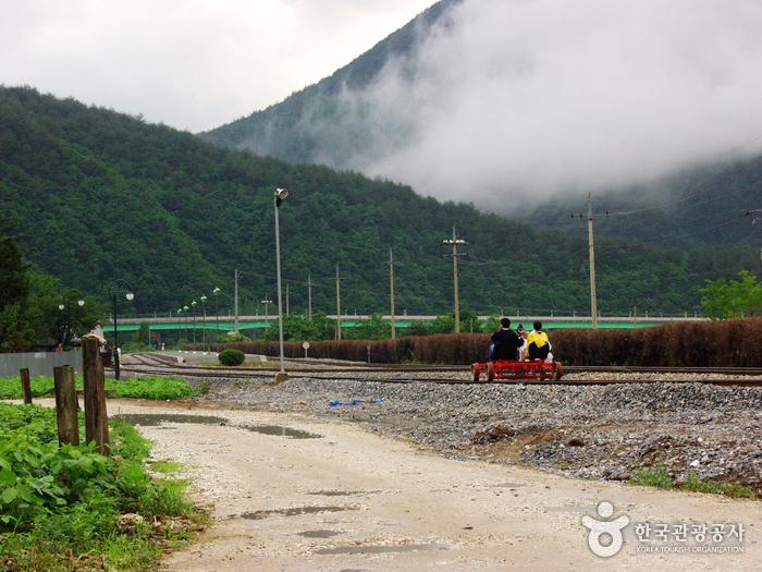 Railbike Jeongseon Auraji (정선 아우라지 레일바이크)