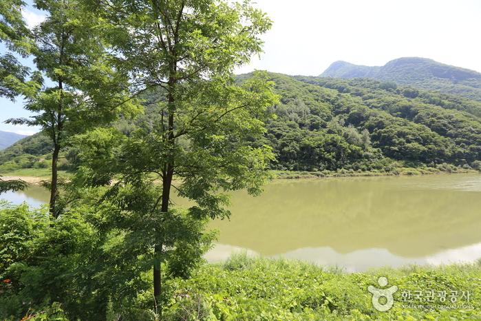 태화산(강원)