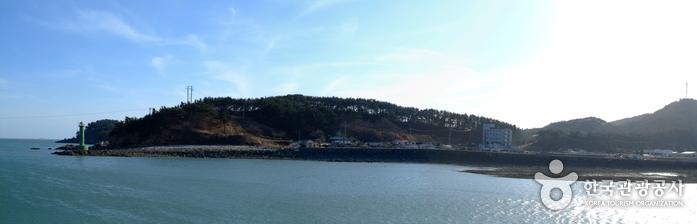 新津島(신진도)