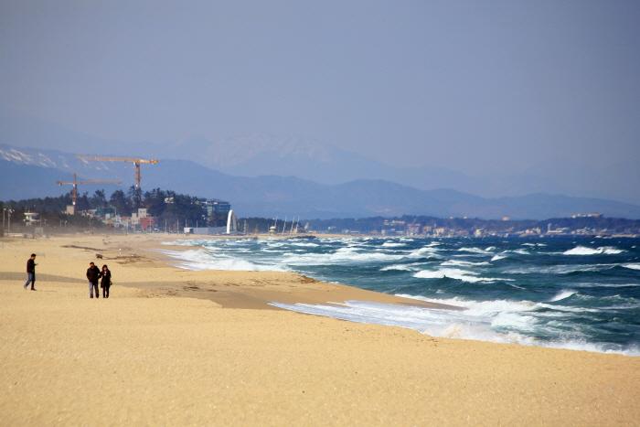 안목해변의 풍경